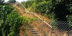 Nature-ist: Lyndhurst Way Railway Sidings