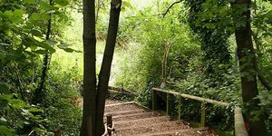 Nature-ist: Camley Street Natural Park