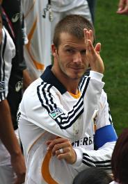 Becks In The Bird's Nest