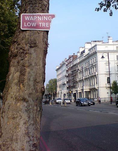 London's Lexicon #11