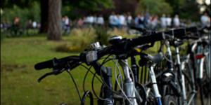 Careless Cyclists Causing Park Strife