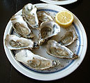 Plate of oysters
