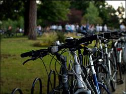 2409_bikes.jpg