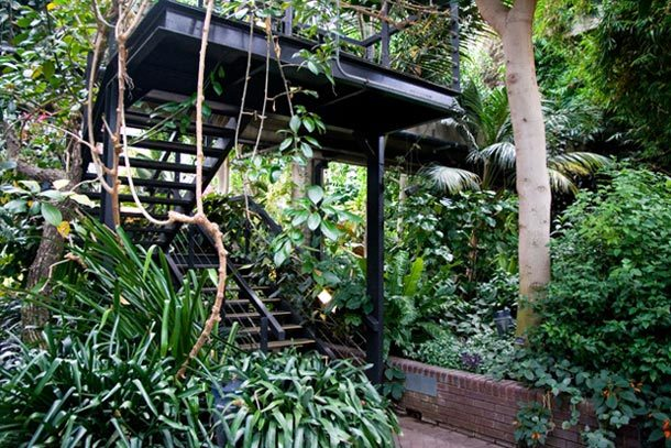 Nature-ist: Barbican Conservatory