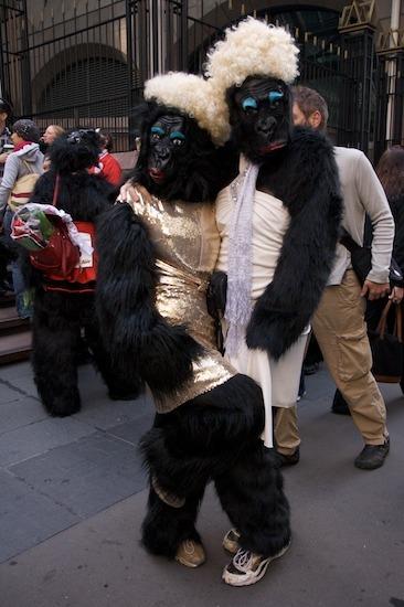 10311_gorilla_7.jpg