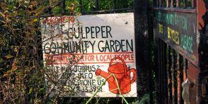 Nature-ist: Culpeper Community Garden