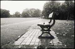 0112.lonely.jpg