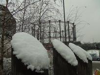0312.snow.jpg