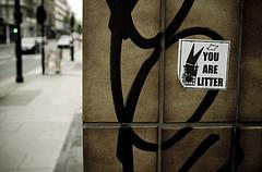 1301.litter.jpg