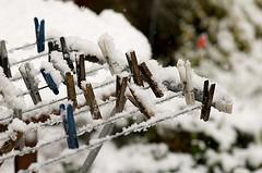 0102.snow.jpg