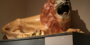From The Horniman: Gentle Lion