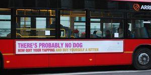 Atheist Bus Ad Slogan Generator
