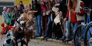 Review: The Oxford-Cambridge GOAT Race