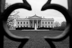 0603_whitehouse.jpg