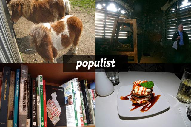 populist280309.jpg