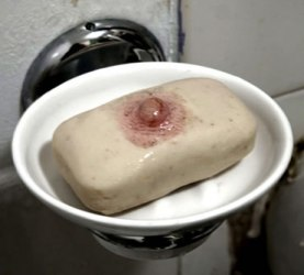 soapweb72dpi.jpg