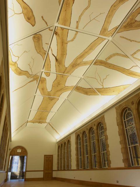 NHM Gets Alternative Oak Ceiling