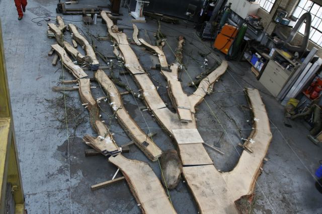 TREE in Mike Smith Studio, being laid out before going in the kiln to dry. © Mike Smith Studio