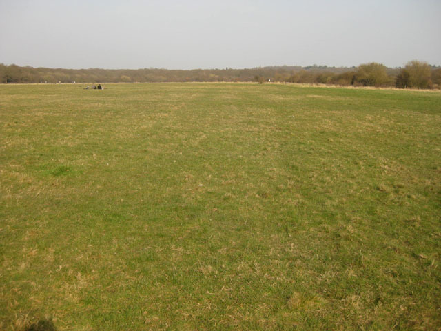 We emerge onto Chingford Plain, a wide open space for picnics and flying radio controlled vehicles.