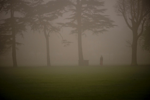 Photo of the Day: fog