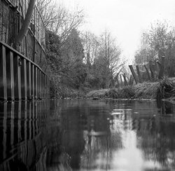 Help Clean Up London's 'Secret' Rivers