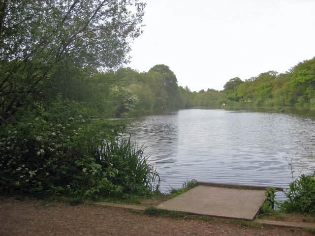 A fishing lake near Cockfosters.