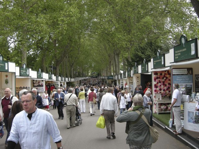 The main promenade