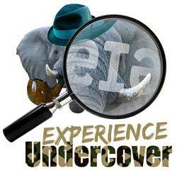 13656_eia_undercover.jpg