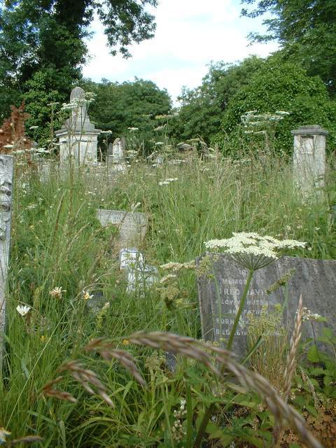 Nature-ist: Tower Hamlets Cemetery