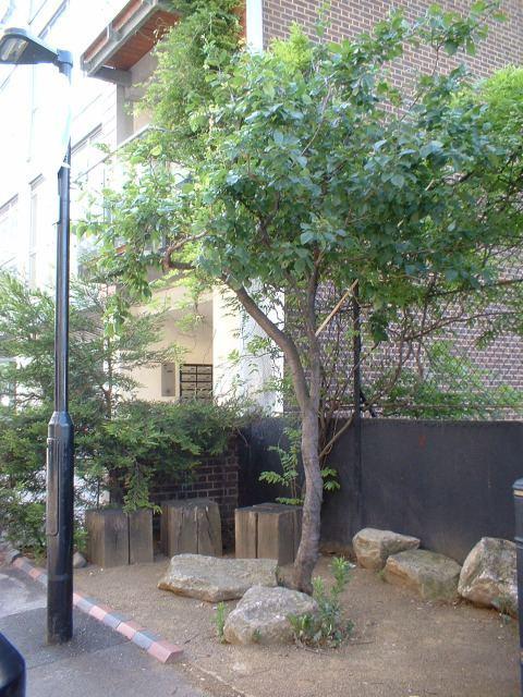 13818_featherstonestreet6.jpg