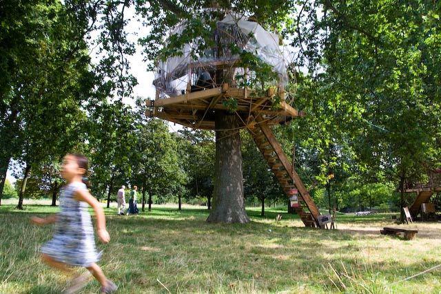 14046_treehouse_main.jpg