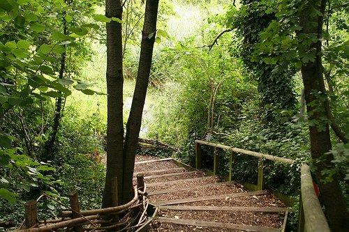 camley_street_trail.jpg