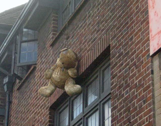 Leave No Bear Behind...Part 7
