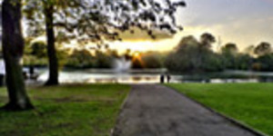 Have Your Say On The Future Of Victoria Park