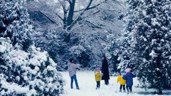 winterarboretum.jpg