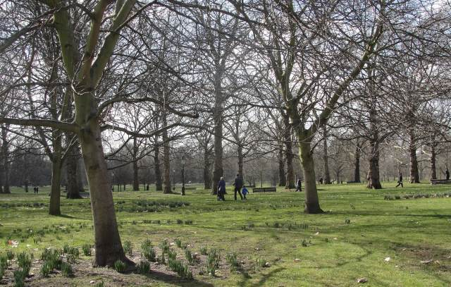 "Green Park: ""June had drawn out every leaf on the trees. The mothers of Pimlico gave suck to their young. Messages were passing from the Fleet to the Admiralty. Arlington Street and Piccadilly seemed to chafe the very air in the Park and lift its leaves hotly, brilliantly, on waves of that divine vitality which Clarissa loved."" (p. 4)"