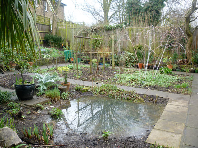 View of the rear garden and pond