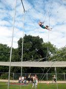 trapezegorilla.jpg