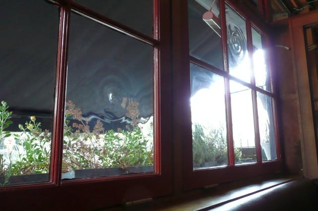 16887_greenwich_union_window.jpg