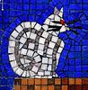 Putney Patients To Get Feline Companionship