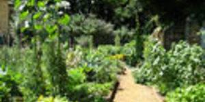 Last Minute Listing: Festival Of Herbs