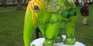 Elephant Parade: Android App To Find The Elephants