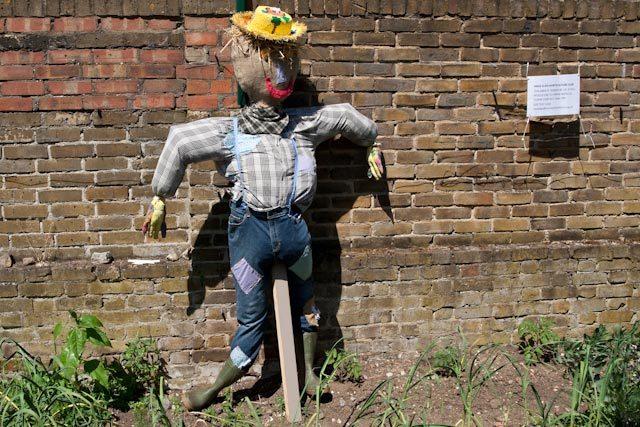 17422_surreydocks_scarecrow.jpg