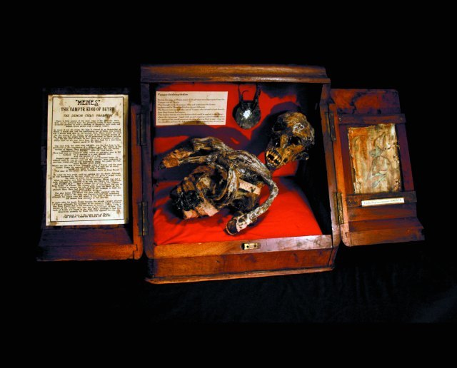 The mummified remains of a child vampire.