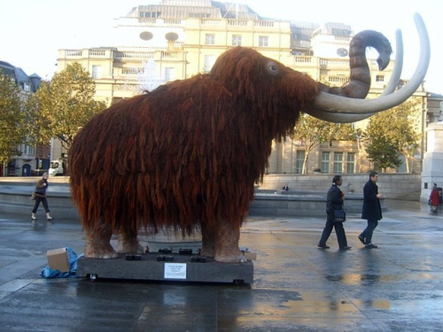 The remains of a mammoth were found while constructing Trafalgar Square. This isn't him, though. Image by Mike Sizemore.