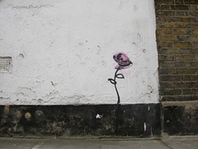 urban bloom.jpg
