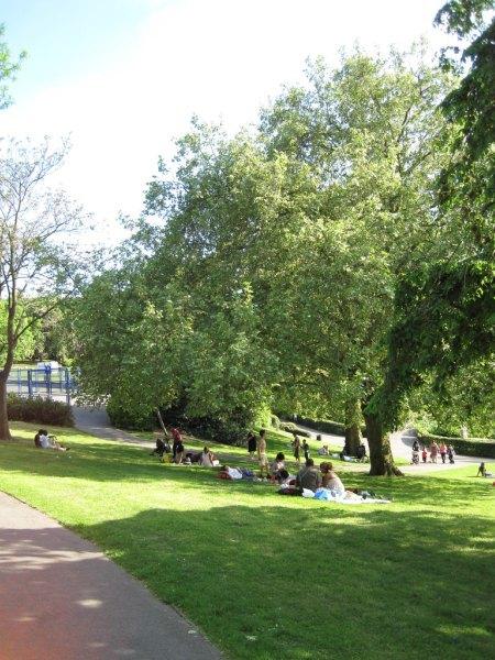 Telegraph Hill Park