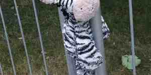 Leave No Bear Behind Part 14: Zebra Crushing