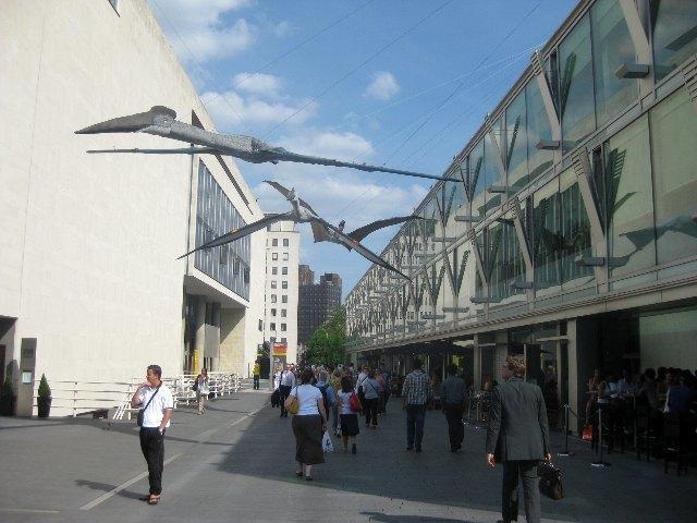 Pterosaurs.jpg