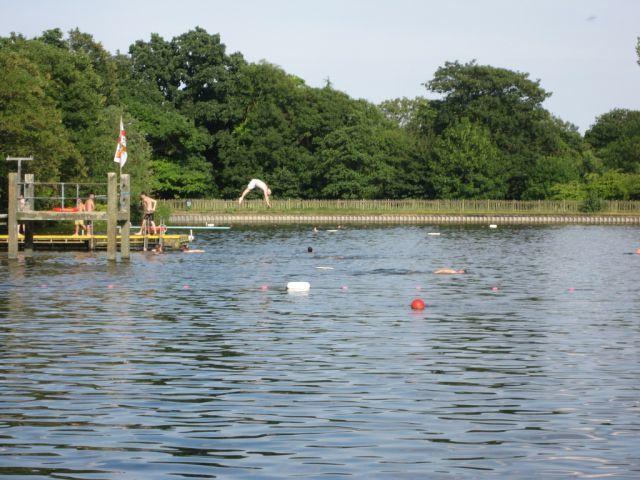18032_hampstead_pond4.jpg